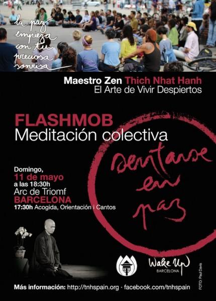 Cartell-Flashmob-Meditació-CAST-2014-03-27-at-16-32-41-430x600