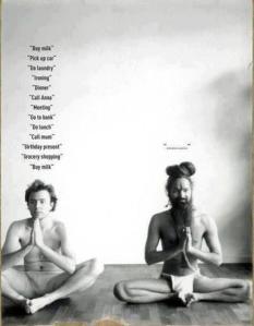 yogi-meditating