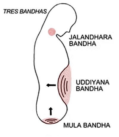 bandhas