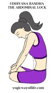 uddiyana_bandha_abdominal_lock_yoga